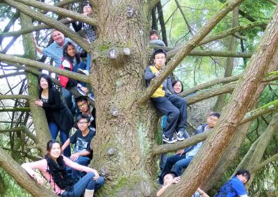melbourne-students-in-tree